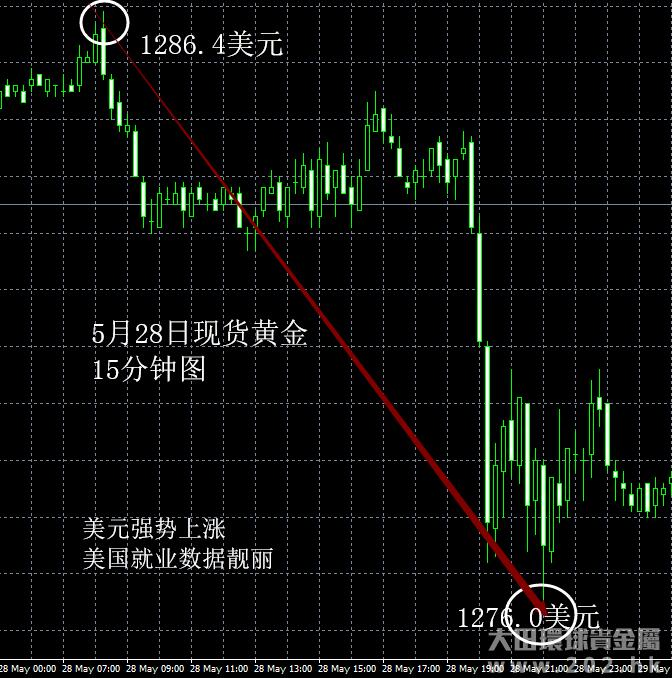 5月28日 美元强势上涨利空